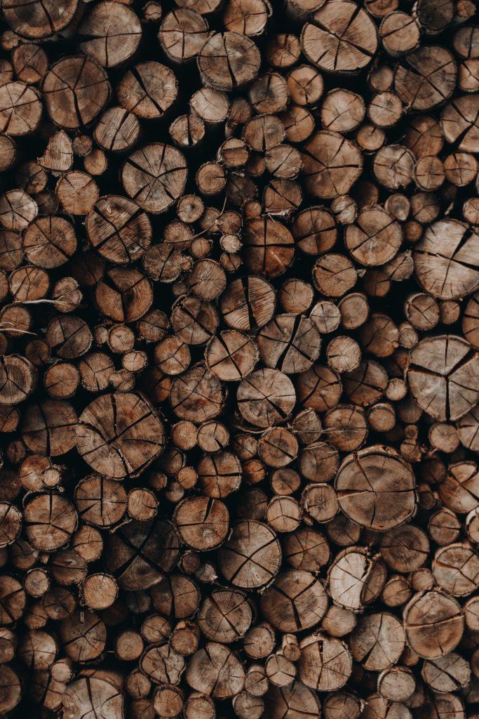timber woodpile